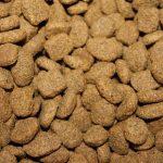 מה הופך את נטורל דלישס למזון כלבים וחתולים מעולה?
