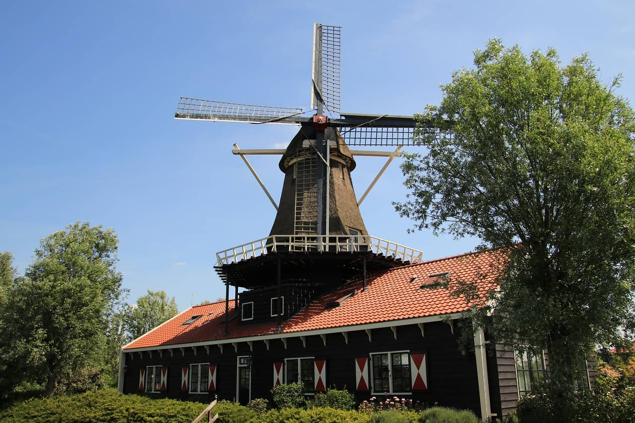 הולנד ראשית