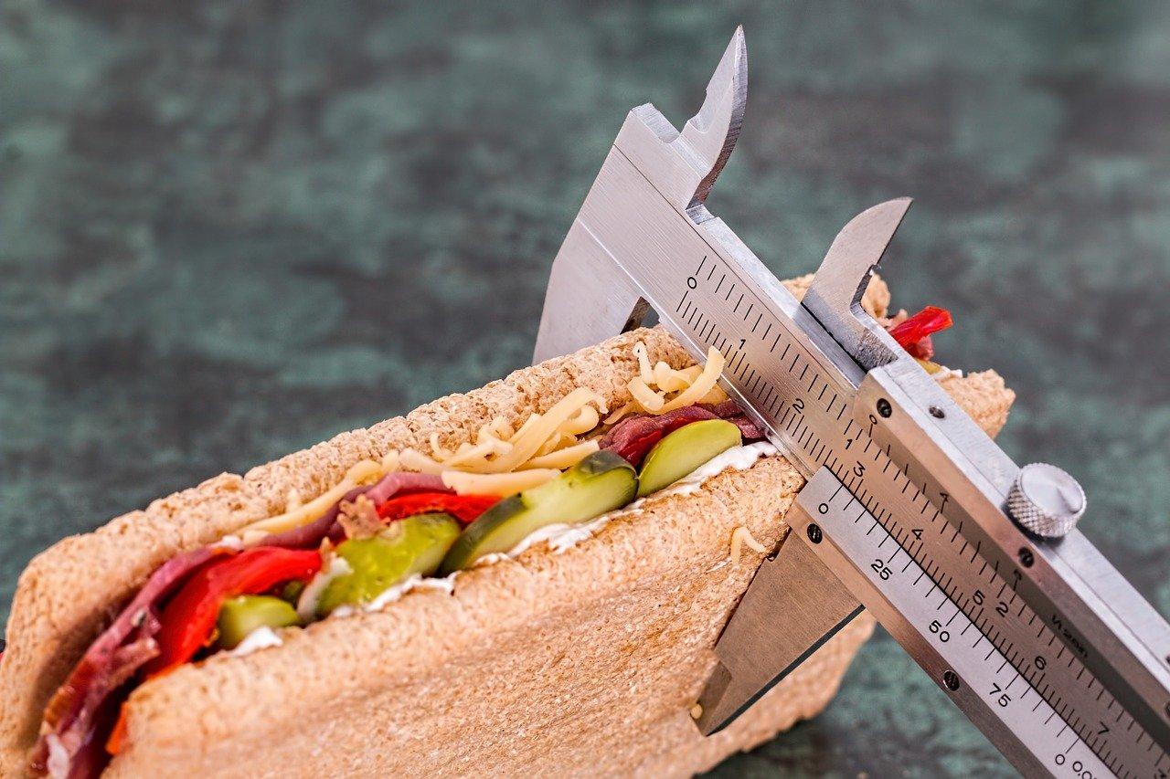 diet 1610592644 - ההבדלים בין אנורקסיה ובולימיה